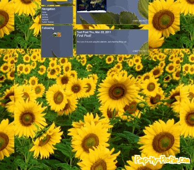 Sunflower Tumblr Themes - Pimp-My-Profile.com